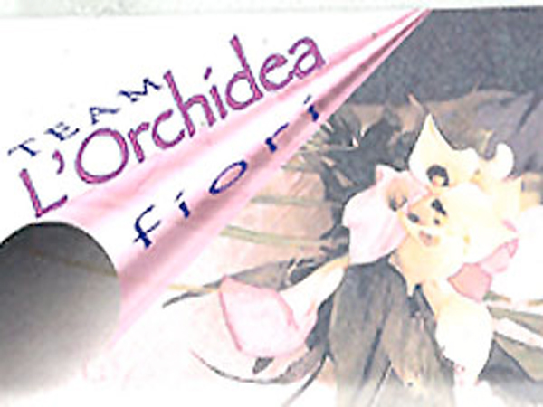 Team l\'orchidea fiori
