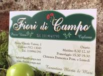 ' .  addslashes(Fiori di Campo) . '