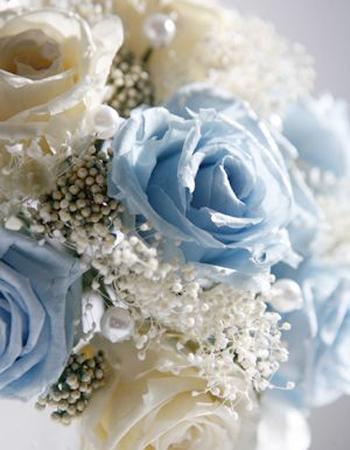 Aya flowers