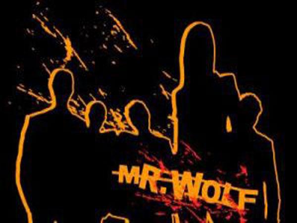 Mr wolf - risolviamo problemi