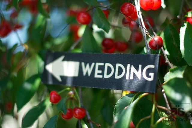 Alambra Wedding