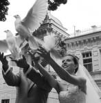' .  addslashes(Le Ali dell'Amore - Colombe per matrimoni) . '