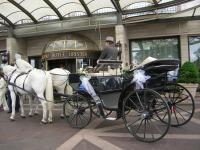 ' .  addslashes(White Horse - Cavalli e carrozze) . '