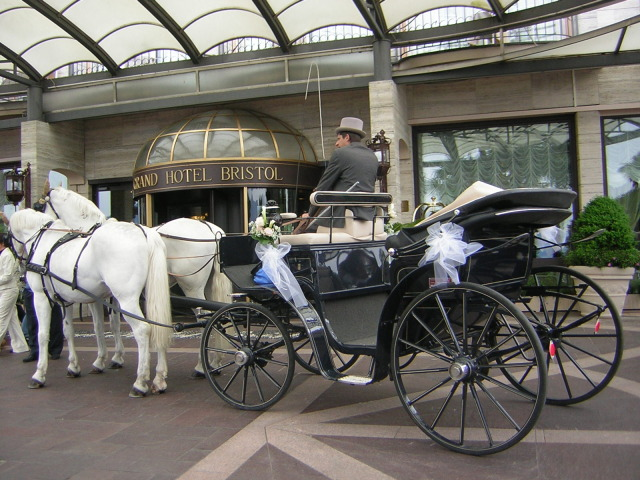 White Horse - Cavalli e carrozze