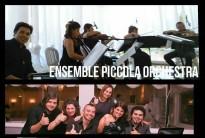 ' .  addslashes(Ensemble Piccola Orchestra) . '