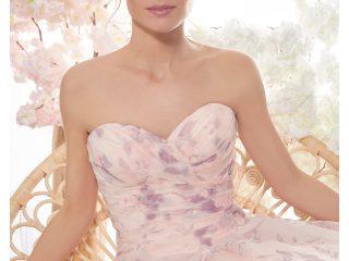 ' .  addslashes(Primula Bianca) . '