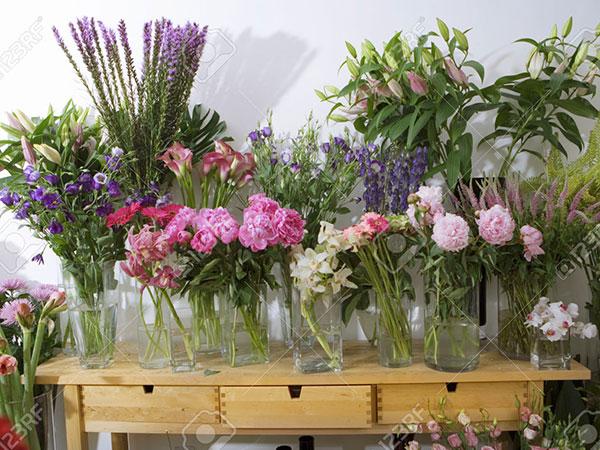 Idea verde - commercio piante e fiori