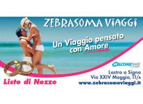' .  addslashes(Zebrasoma Viaggi) . '
