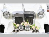 ' .  addslashes(Sempre Sempre Wedding Planner) . '
