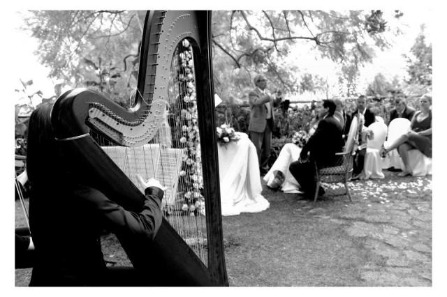 Musica d\'Arpa per Matrimonio ed Eventi