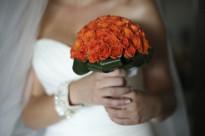 ' .  addslashes(Sulemare Wedding) . '