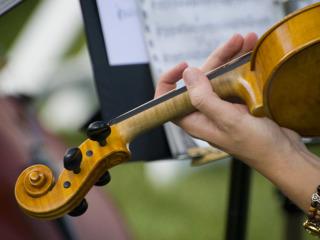 L'accompagnamento della musica di un solista per un matrimonio romantico e delicato