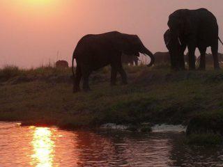 La luna di miele in Namibia, l'Africa pacifica ed accogliente che si tinge dei colori del sogno