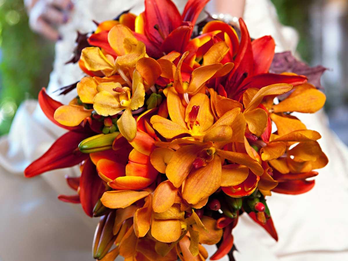 Fiori e addobbi per un matrimonio in inverno stagione pi for Immagini fiori autunnali
