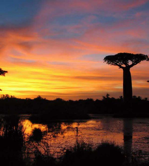 Viaggio di nozze in Madagascar, l'isola dove la bellezza non ha confini