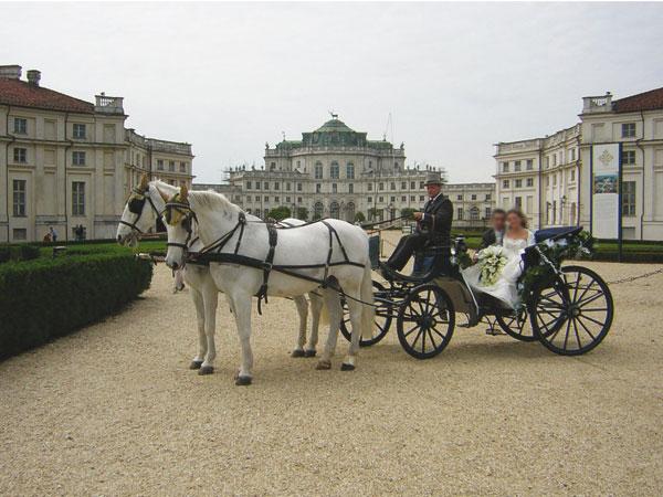 In omaggio l'addobbo floreale agli sposi che prenotano la carrozza da White Horse - cavalli & carrozze