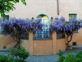 ' .  addslashes(Villa il Palazzo) . '