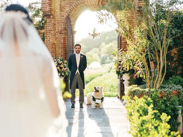 Il vostro Fido al ricevimento? Itaca applica a tutti gli sposi uno sconto del 10% sul Wedding Dog Sitter
