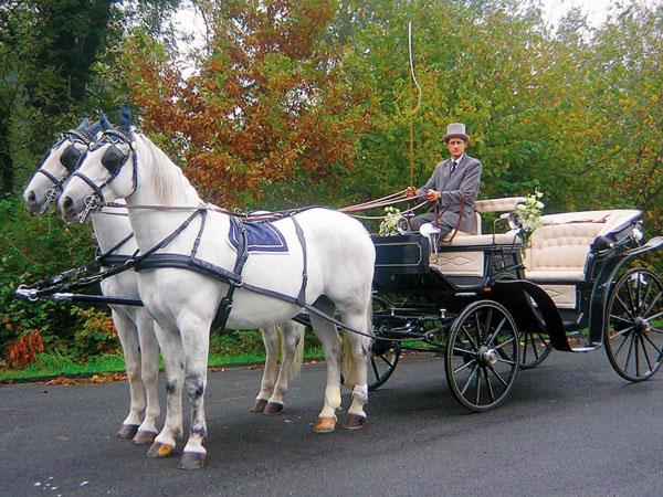 White Horse applica uno speciale sconto del 5% per il noleggio di una carrozza con cavalli