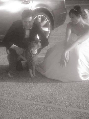 PET Service Corato - Wedding Dog Sitter Puglia