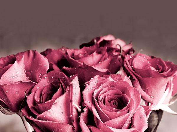 Casa dei Fiori realizza per le novelle coppie addobbi d'eccezione e regala loro il bouquet da lancio