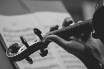 ' .  addslashes(Dolcimelo Ensemble Milano) . '