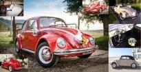 ' .  addslashes(Maggiolino Cabrio Toscana auto matrimono sposi) . '