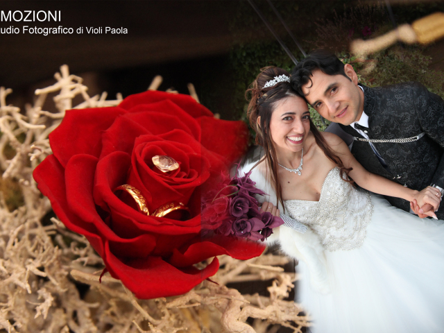 Violi Paola Photographer
