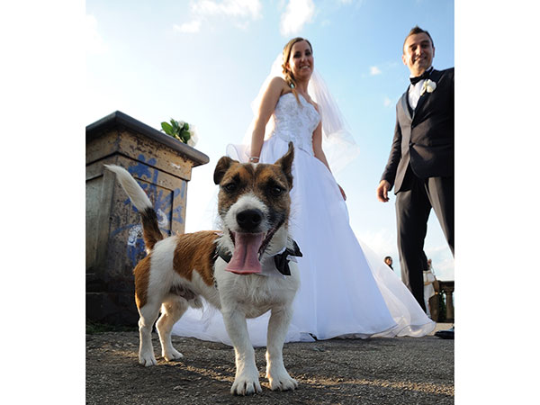 Matrimonio a Tre
