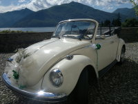 ' .  addslashes(Old Beetle Eventi) . '