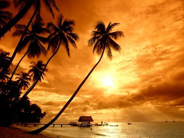 L\'Atelier Il Sogno regala agli sposi che acquistano entrambi gli abiti un viaggio ai Caraibi