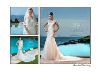 Gentile Wedding