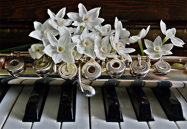 La cerimonia di nozze sta finalmente per iniziare… musica maestro!