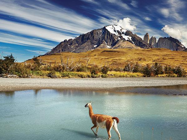 Patagonia nel cuore dell'Argentina: un viaggio di nozze per gli sposi che amano la meditazione
