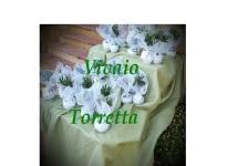 ' .  addslashes(Vivaio Torretta) . '