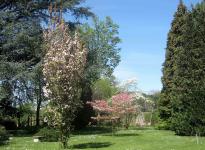 ' .  addslashes(Villa Parravicino) . '