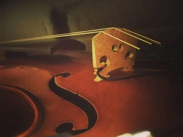 Violinista Cecilia Grifone
