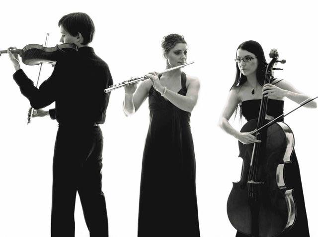 Luca C. Musica Cerimonie