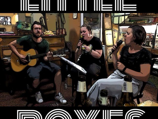 Little Boxes Acoustic Trio