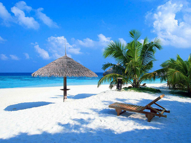 Paradise Planet