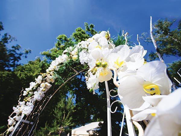 Scegliete atmosfere tropical per la vostra cerimonia in location e per il wedding party