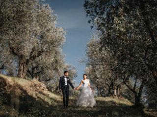 ' .  addslashes(Morandi Fotografia) . '