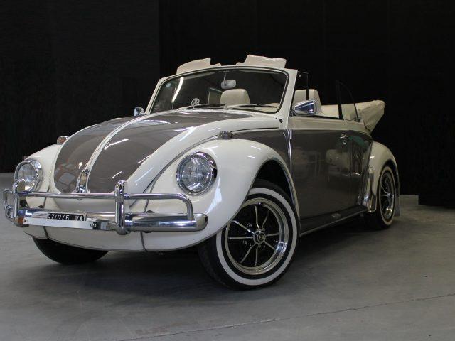 Le Auto di Magnolia